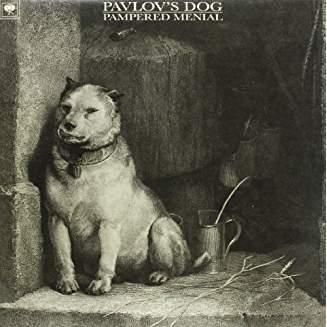 Pampered Menial (TRANSPARENT & BLACK MARBLED Vinyl)